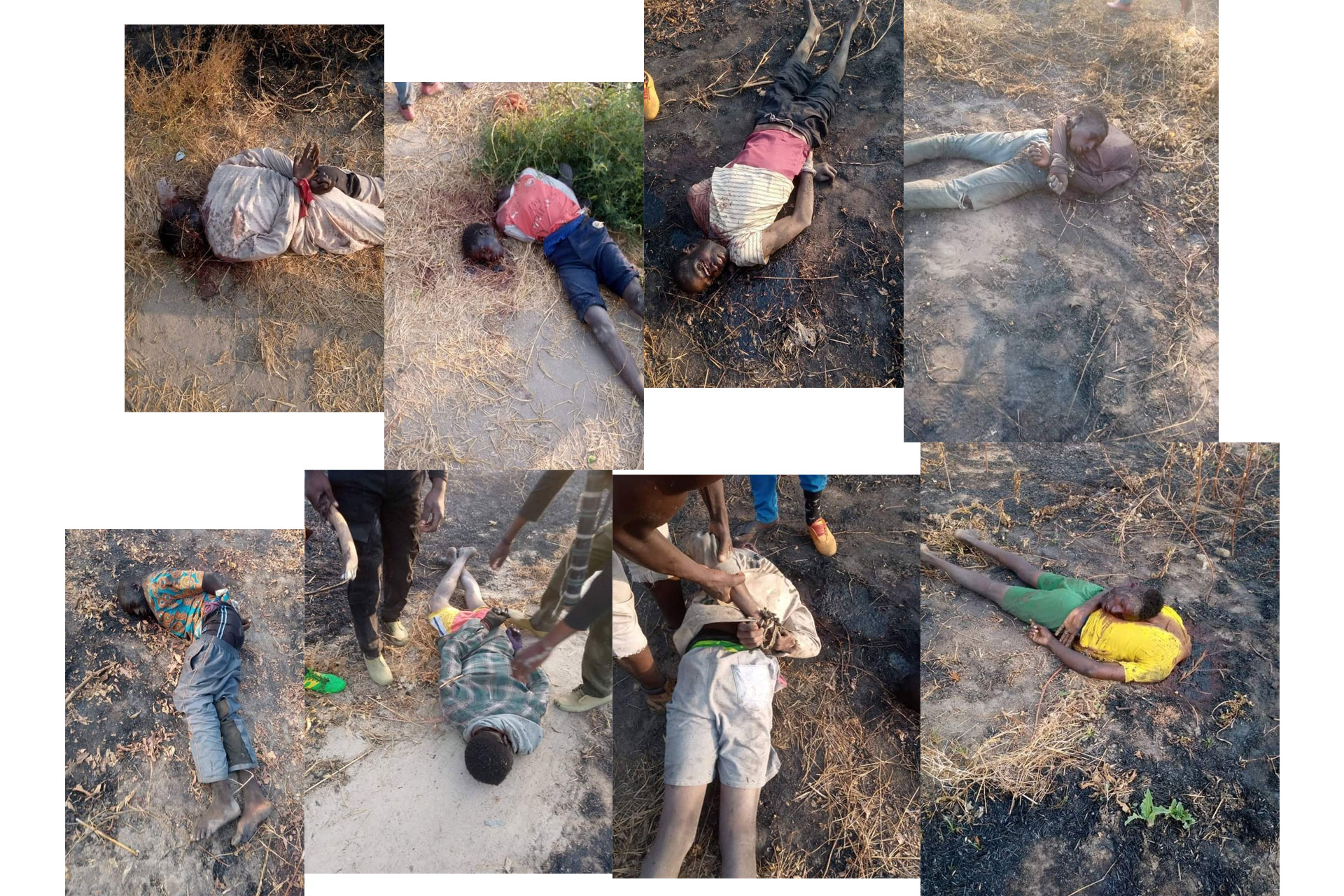 Rice Farmers Beheaded By Boko Haram In Borno State Nigeria, GRAPHIC PHOTOS