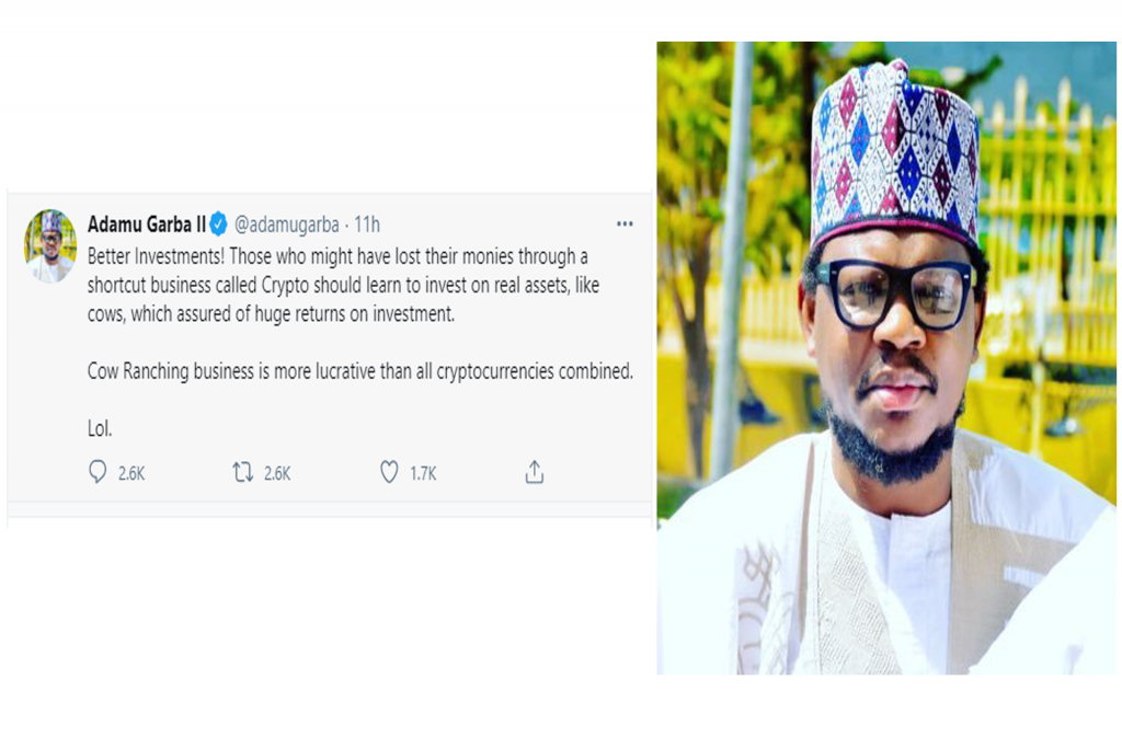 Investing In Cows Is Far Better Than Investing In Cryptocurrency Adamu Garba