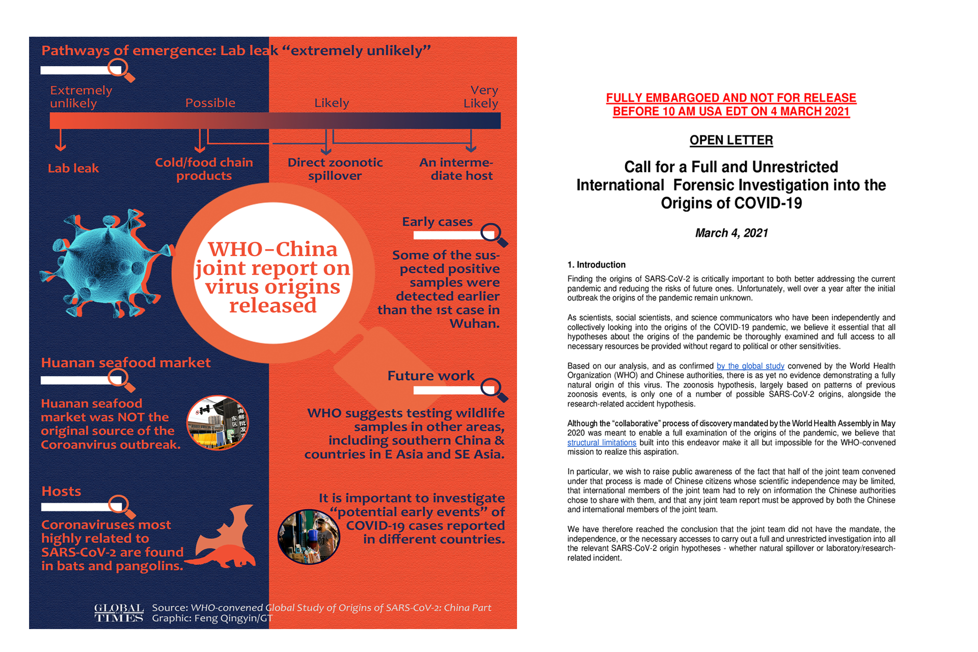 WHO Releases Report On The Origin Of COVID 19