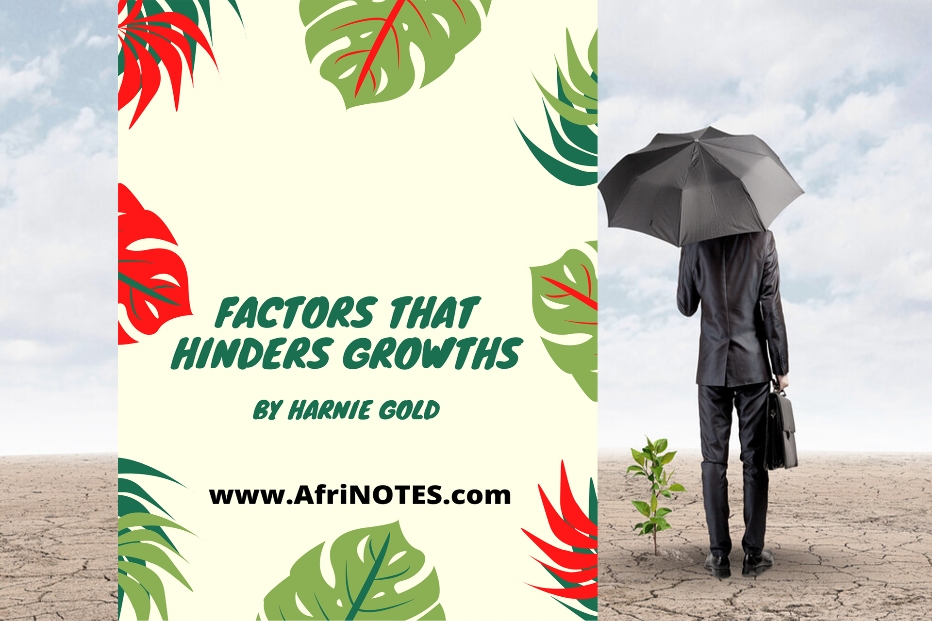 Factors That Hinders Growths